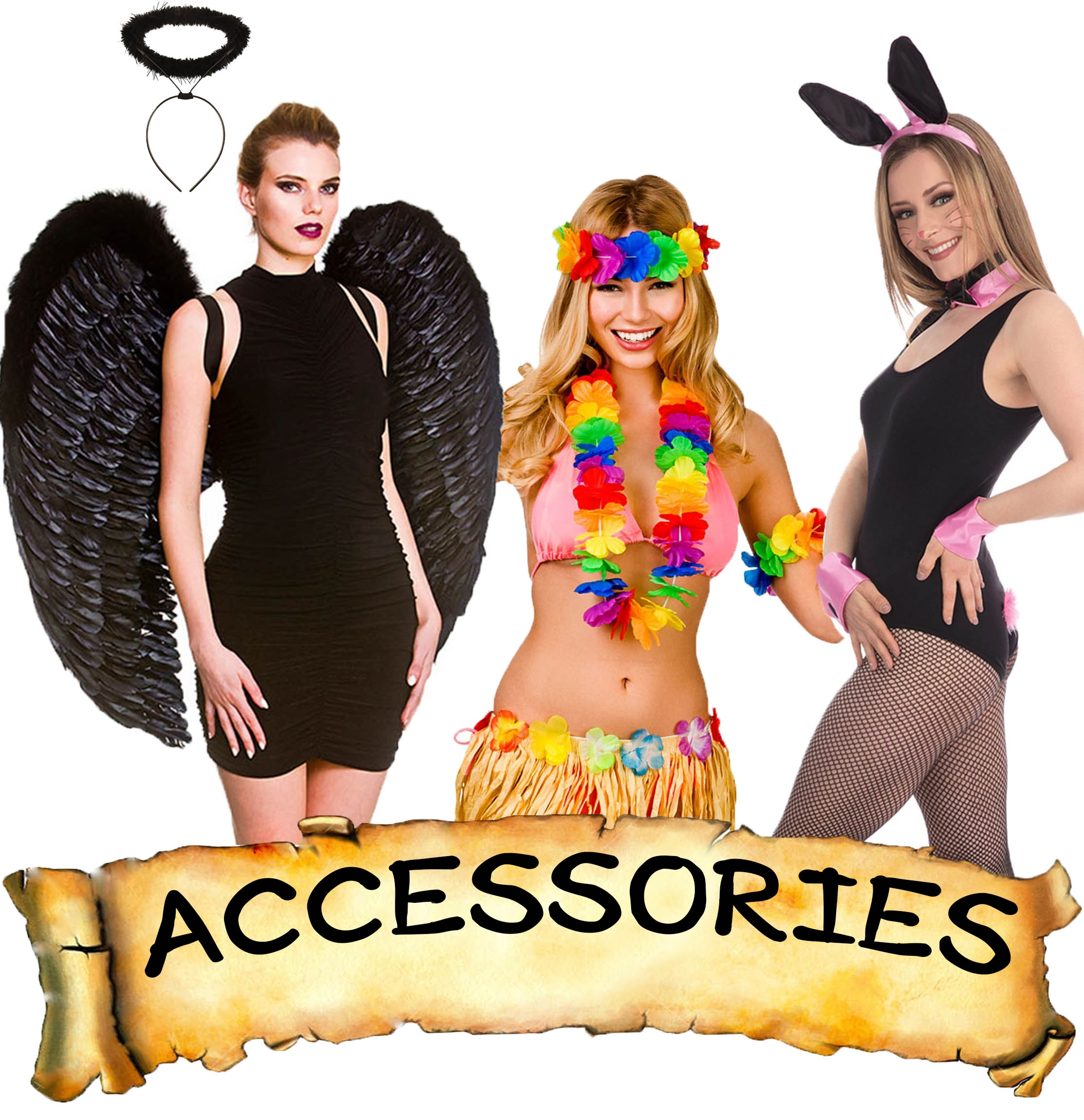 Hen Accessories