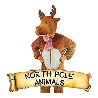 North Pole Animals