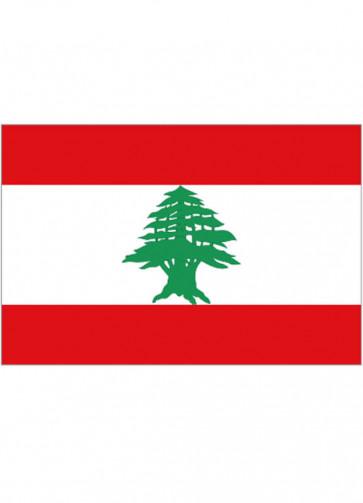 Lebanon Flag 5x3