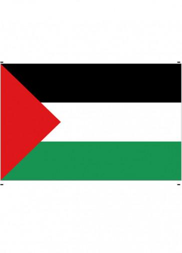 Palestine Flag 5x3