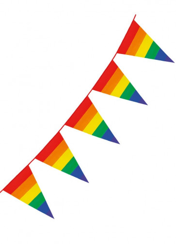 Large Rainbow Pride Triangular Plastic Bunting 8m