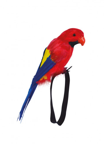 Colourful Feathered Parrot For Wrist 29cm