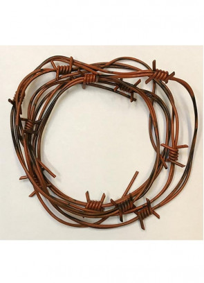 Barbed Wire 250cm