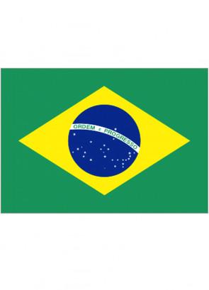 Brazil Flag 5x3