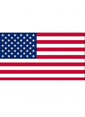 United States (USA American) Flag 5x3 (Basic)