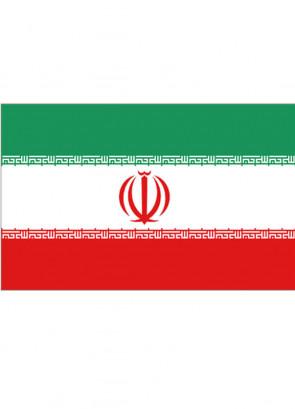 Iran Flag 5x3