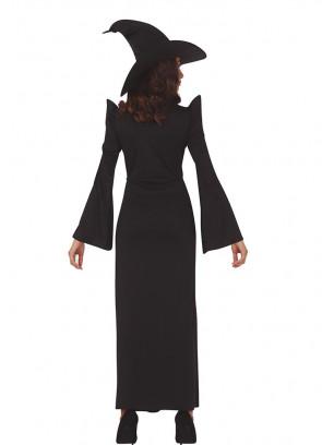 Professor at School of Wizardry Ladies Costume