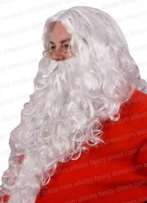 Santa or Wizard Wig and Beard