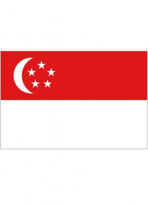 Singapore Flag 5x3