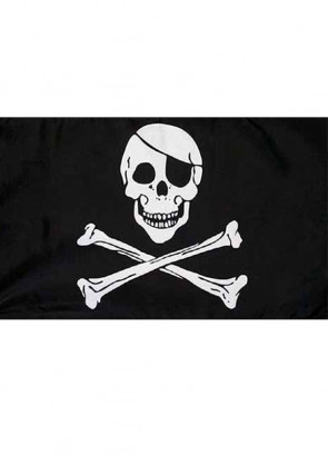 Pirate Skull & Crossbones Flag 5x3