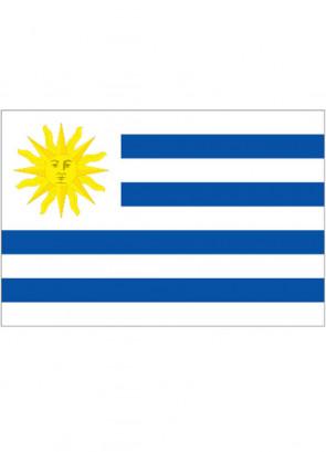 Uruguay Flag 5x3
