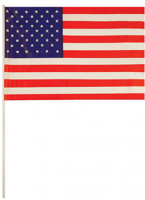USA Mini Hand Flag x50pcs 7''x11''