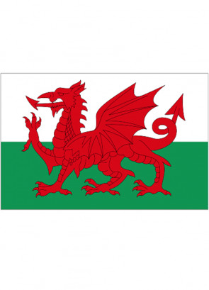 Wales Flag 5x3