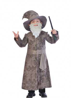 Wise Grey Wizard