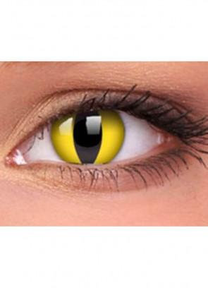 Wild Cat Lenses - One day Wear