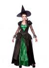 Deluxe Emerald City Witch Queen Costume